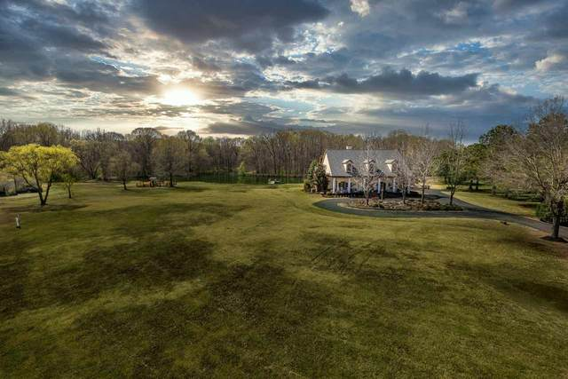 10224 Springmont Trl, Collierville, TN 38017 (#10095833) :: The Wallace Group - RE/MAX On Point
