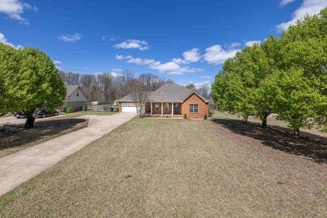 166 Kelly Cv, Brighton, TN 38011 (#10096078) :: The Wallace Group - RE/MAX On Point