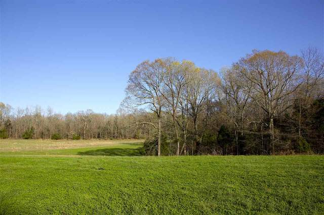 9175 Jernigan Rd, Somerville, TN 38068 (#10096184) :: The Wallace Group - RE/MAX On Point