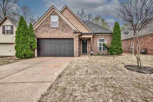 5251 Newton Oak Cir S, Memphis, TN 38117 (#10096224) :: Area C. Mays | KAIZEN Realty