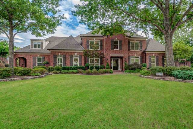 8824 Red Maple Cv, Germantown, TN 38139 (#10096231) :: Area C. Mays | KAIZEN Realty