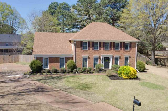 8308 Honey Hill Cv, Germantown, TN 38138 (#10096369) :: The Wallace Group - RE/MAX On Point