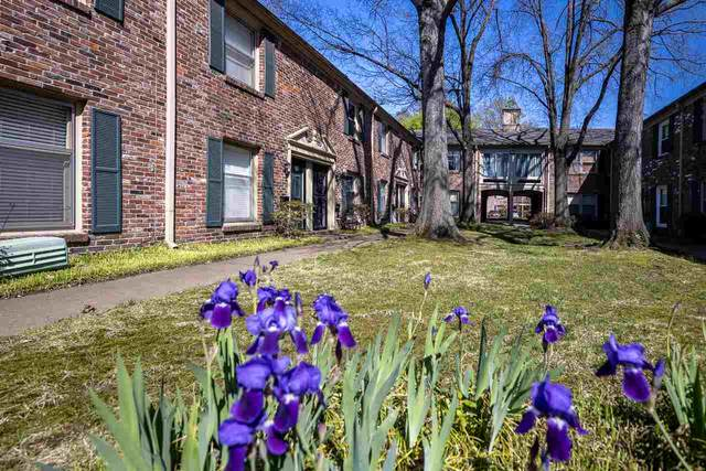 1205 Bristol Dr #10, Memphis, TN 38119 (#10096499) :: The Wallace Group - RE/MAX On Point