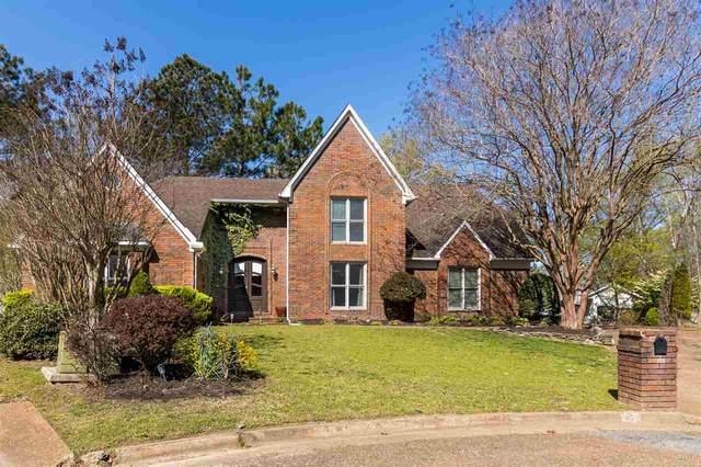 95 Timber View Cv, Memphis, TN 38018 (#10096568) :: Bryan Realty Group