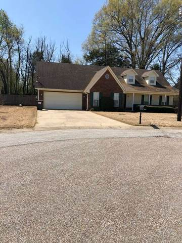 139 Windward Pl, Brighton, TN 38011 (#10096583) :: The Wallace Group - RE/MAX On Point
