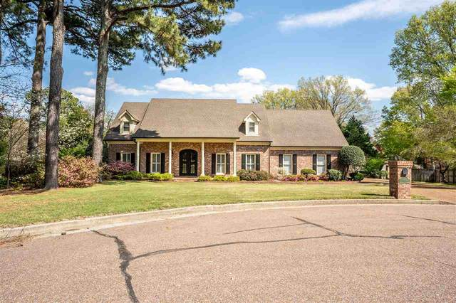 8207 Everwood Cv, Germantown, TN 38138 (#10096668) :: The Wallace Group - RE/MAX On Point