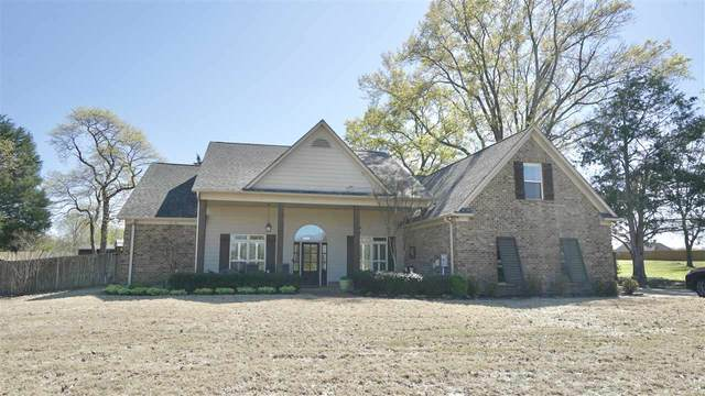 115 Caleb Rd, Unincorporated, TN 38060 (#10096669) :: The Wallace Group - RE/MAX On Point