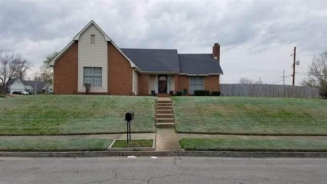 6666 Rocky Park Dr, Memphis, TN 38141 (#10096695) :: RE/MAX Real Estate Experts