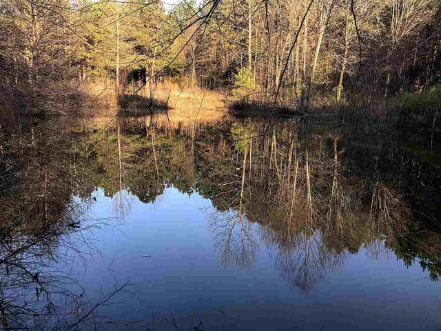 Robert Ford Rd, Waterford, MS 38685 (#10096857) :: Area C. Mays   KAIZEN Realty