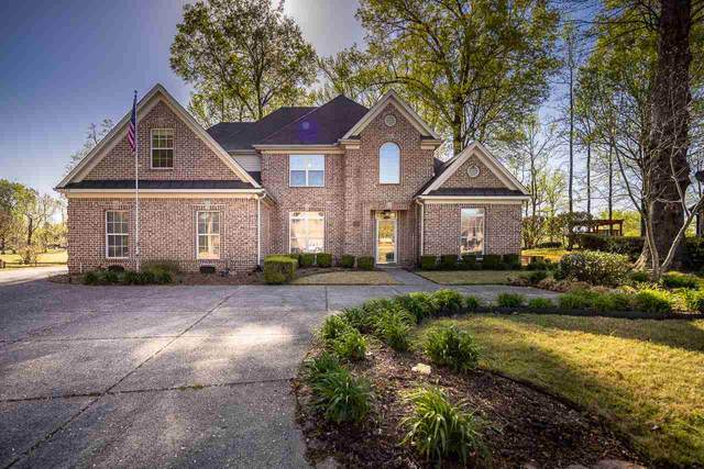 6220 Dana Cheryl Ln, Bartlett, TN 38135 (#10096928) :: The Wallace Group - RE/MAX On Point