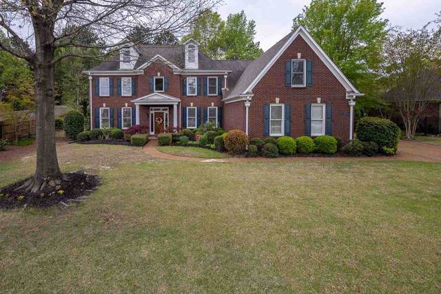 9873 S Houston Oak Dr, Germantown, TN 38139 (#10097080) :: Faye Jones | eXp Realty