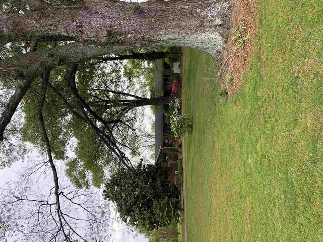 1914 Pickens Store Rd, Unincorporated, TN 38049 (#10097093) :: All Stars Realty