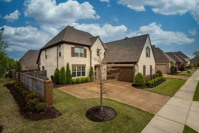 10062 Morning Cross Ln, Collierville, TN 38017 (#10097127) :: All Stars Realty