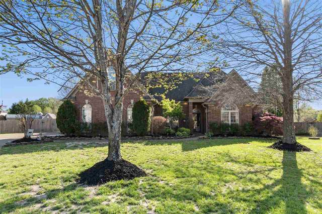 60 Blackhill Cv, Oakland, TN 38060 (#10097199) :: All Stars Realty