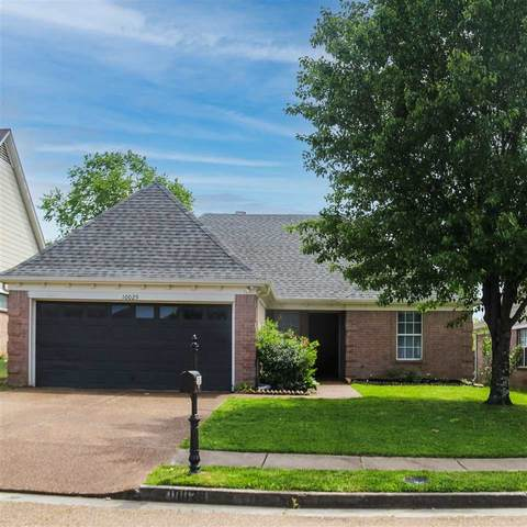 10029 Houston Birch Dr, Memphis, TN 38016 (#10097253) :: Bryan Realty Group