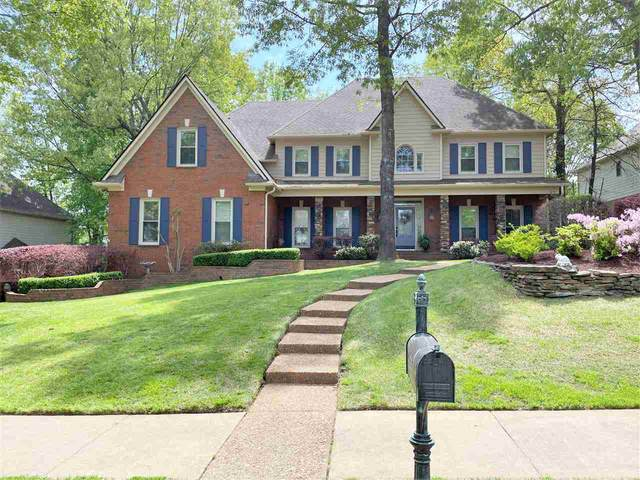 925 Oak Arrow Cv, Collierville, TN 38017 (#10097264) :: All Stars Realty