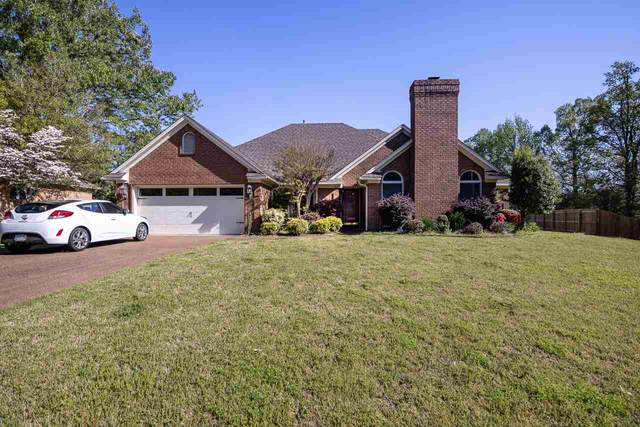 8934 Walnut Forest Cv, Memphis, TN 38018 (#10097310) :: Bryan Realty Group