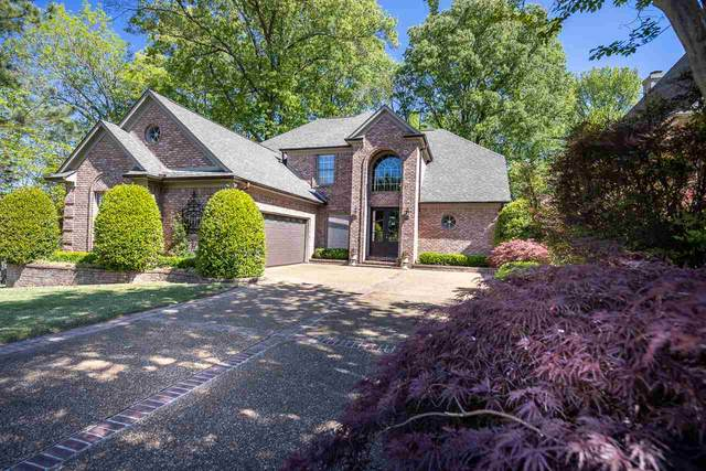 8776 Becca Pt, Memphis, TN 38016 (MLS #10097535) :: Gowen Property Group | Keller Williams Realty