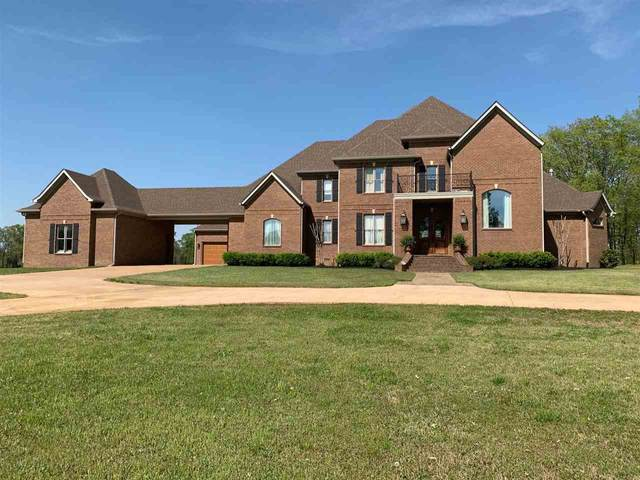4236 New Hope Rd, Michie, TN 38357 (#10097553) :: RE/MAX Real Estate Experts