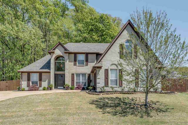 5568 Southern Winds Dr, Arlington, TN 38002 (#10097601) :: All Stars Realty