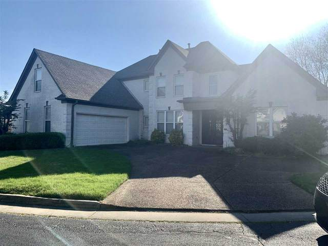 313 Freedom Woods Cv, Memphis, TN 38018 (#10097628) :: RE/MAX Real Estate Experts