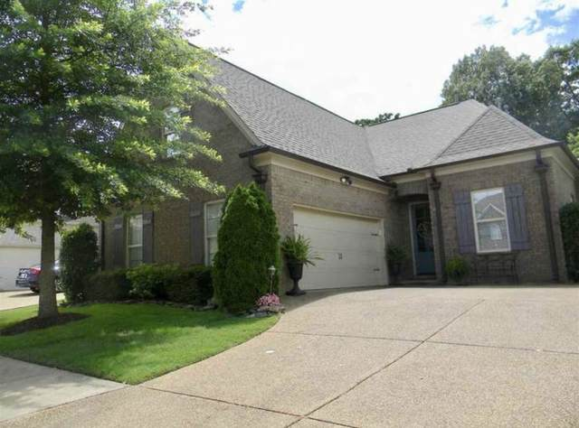 159 W Porter Run Dr, Collierville, TN 38017 (#10097876) :: RE/MAX Real Estate Experts