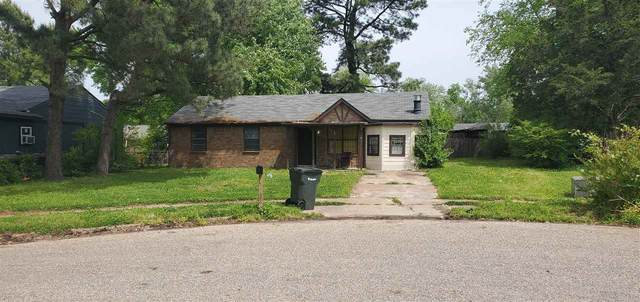 800 Archie Dr, Unincorporated, TN 38127 (#10098067) :: Faye Jones | eXp Realty