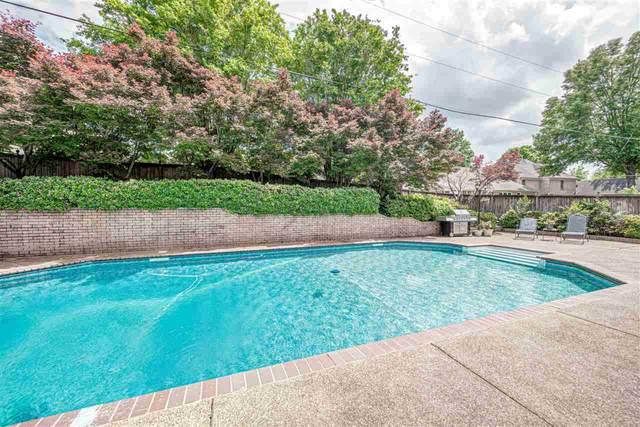 8983 Chimneyrock Blvd, Memphis, TN 38016 (#10098528) :: RE/MAX Real Estate Experts