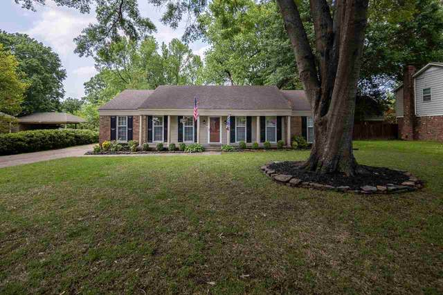 7180 Mimosa Dr, Germantown, TN 38138 (#10098603) :: The Home Gurus, Keller Williams Realty