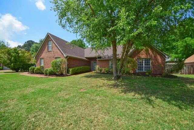 253 Bradford Ridge Cv, Collierville, TN 38017 (#10098710) :: The Home Gurus, Keller Williams Realty