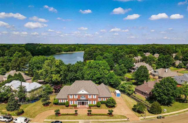 8842 River Hollow Dr, Memphis, TN 38016 (#10098712) :: RE/MAX Real Estate Experts