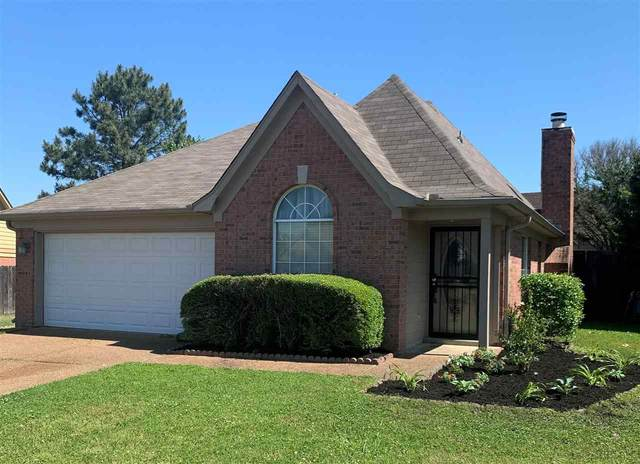 8966 Clair Harbor Cv, Memphis, TN 38016 (#10098854) :: Faye Jones | eXp Realty