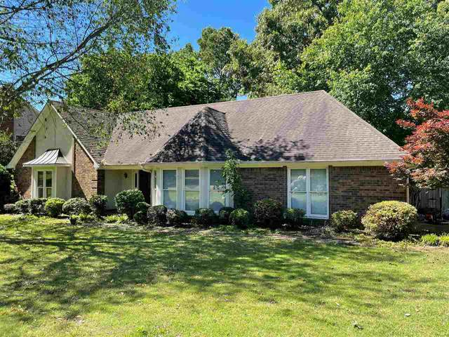 787 Concordia Dr, Collierville, TN 38017 (#10099147) :: All Stars Realty