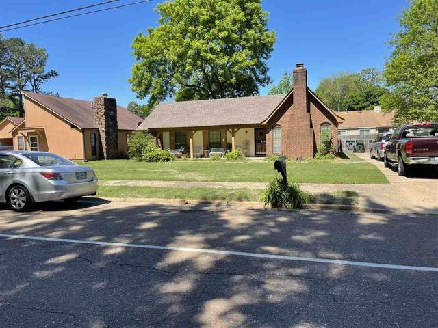 3597 Old Brownsville Rd, Memphis, TN 38135 (#10099168) :: All Stars Realty
