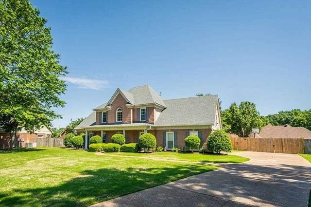 580 Enjelica Cv, Collierville, TN 38017 (#10099174) :: The Home Gurus, Keller Williams Realty
