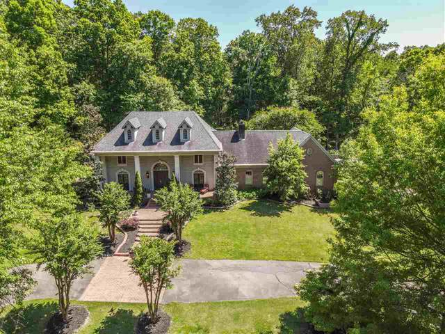 9117 Rocky Cannon Rd, Unincorporated, TN 38018 (#10099324) :: All Stars Realty