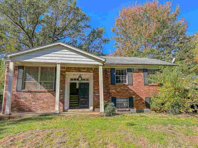 3433 Stone St, Memphis, TN 38118 (#10099387) :: The Home Gurus, Keller Williams Realty