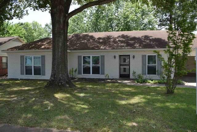 7913 Steven Franklin Dr, Bartlett, TN 38133 (MLS #10099783) :: Gowen Property Group   Keller Williams Realty