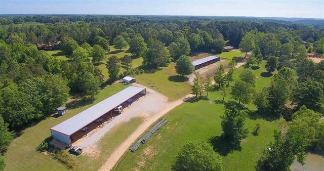 263 Cr 956 Rd, Iuka, MS 38852 (#10100175) :: The Wallace Group - RE/MAX On Point