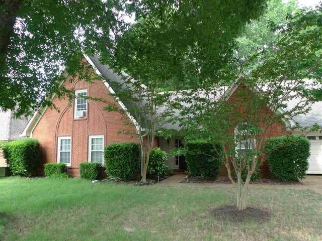 8464 Buckhurst Rd, Memphis, TN 38016 (#10100484) :: All Stars Realty