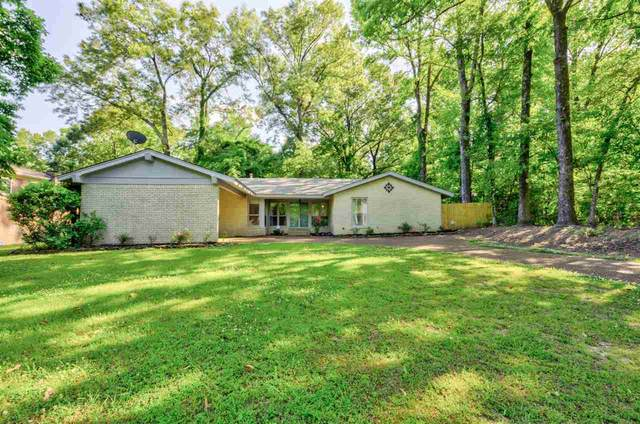3961 Lakewood Dr S, Memphis, TN 38128 (#10100492) :: All Stars Realty