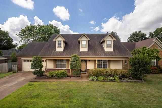 243 Vista Ridge Dr, Collierville, TN 38017 (#10100955) :: J Hunter Realty