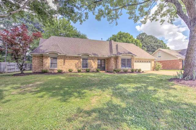 638 Silverman Dr, Collierville, TN 38017 (#10100981) :: All Stars Realty