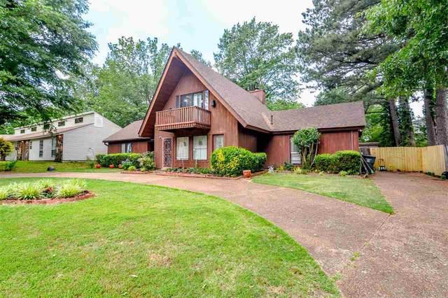 3313 Bright Ridge Cv, Memphis, TN 38115 (MLS #10101026) :: Your New Home Key