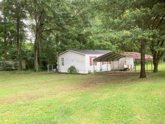 3328 Ray Bluff Rd, Millington, TN 38053 (#10101096) :: J Hunter Realty