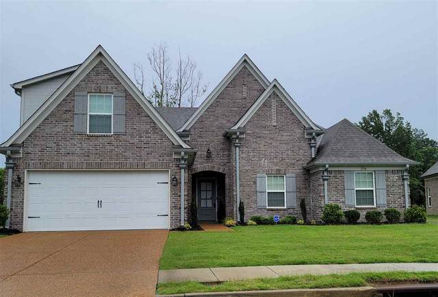3718 Dorrie Cir, Southaven, MS 38672 (#10101158) :: All Stars Realty