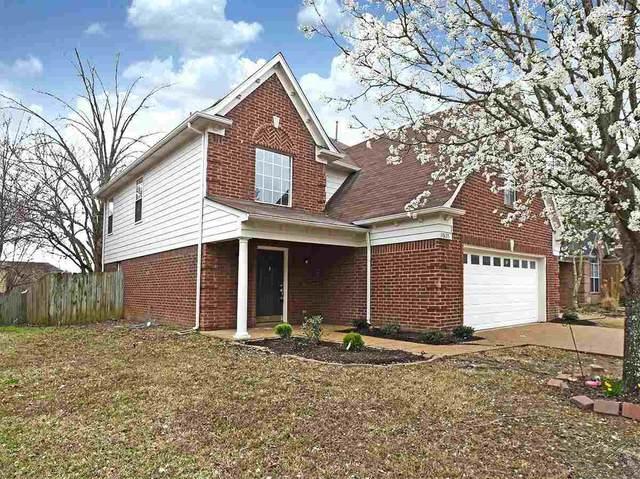 10135 Cameron Ridge Trl, Memphis, TN 38016 (MLS #10101433) :: Gowen Property Group   Keller Williams Realty