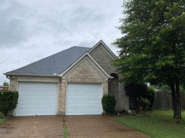 8280 Dexter Ridge Cv E, Memphis, TN 38016 (MLS #10101441) :: Gowen Property Group   Keller Williams Realty