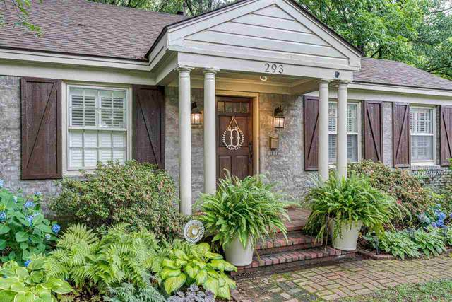 293 High Point Ter, Memphis, TN 38111 (MLS #10101462) :: Gowen Property Group   Keller Williams Realty