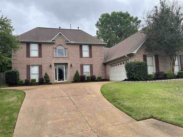 10357 Ivy Laurel Cv, Unincorporated, TN 38018 (#10101464) :: The Wallace Group - RE/MAX On Point